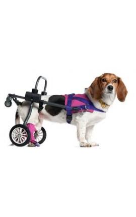 Αναπηρικό καρότσι σκύλου