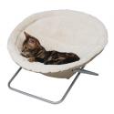 Cat Sleeping nest