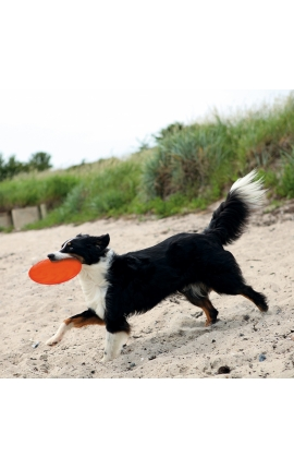 Trixie Dog Disc TPR Floatable