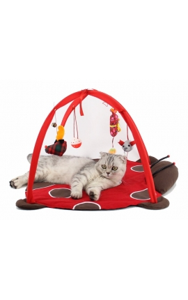 Cat Activity Playing Tent