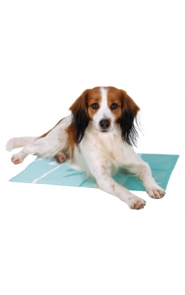 Trixie Cooling Mat Tropic Mint