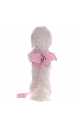 Adorable Pearl Angel Wings Harness With Matching Lead Pink