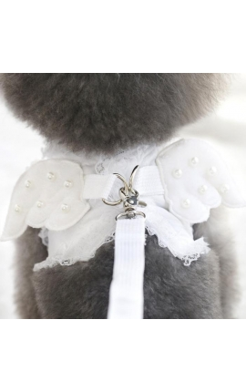 Adorable Pearl Angel Wings Harness With Matching Lead White