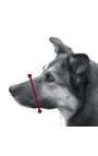 Trixie Muzzle with Net Insert