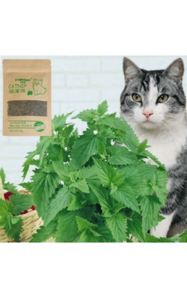 Cat Organic Catnip Grass 10g