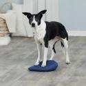 Trixie Balance Cushion