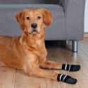 Trixie Dog Socks M-L