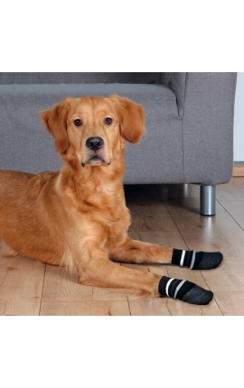 Trixie Dog Socks (Medium – Large)