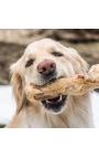 Good Wood Dog Chew 200gr