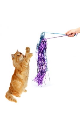 Cat Teaser Interactive Tassel