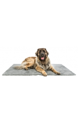 Trixie Hygiene Mat - Medium