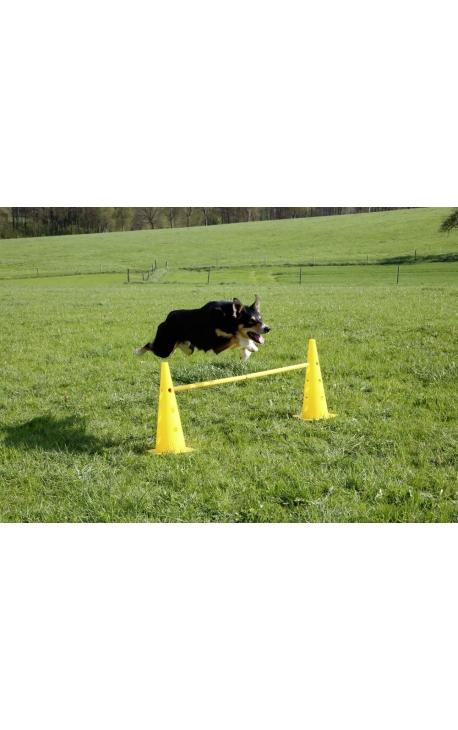 Kerbl Agility Cone-Hurdle Set