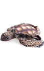 Leo Pet Dog Toy Turtle with Rope