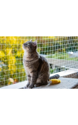 Pawise Protection Net for Cats Transparent 3 x 2m