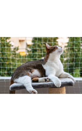 Pawise Protection Net for Cats Transparent 4 x 3m