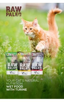 Raw Paleo Wet Kitten Turkey 100 gr