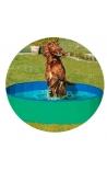 DOGGY POOL GREEN/BLUE 160CM DIAM