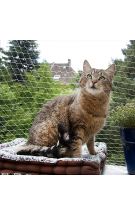 PAWISE Protection Net for Cats Transparent 6 x 3m