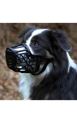 Muzzle, Plastic