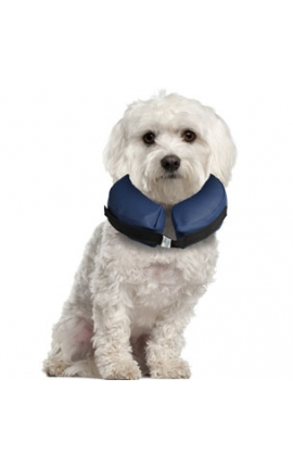 Inflatable Collar For Dogs S