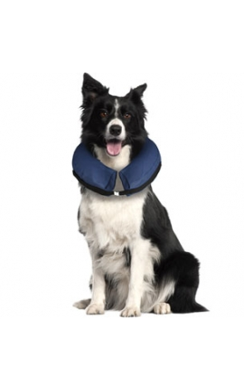 Inflatable Collar for Dogs  M