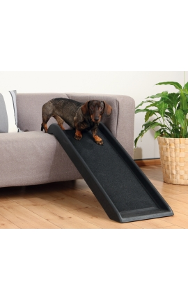 Trixie Petwalk Ramp